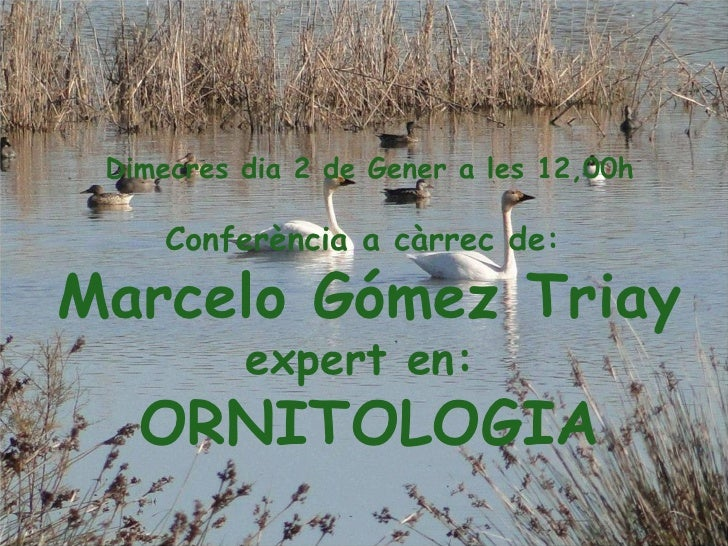 Dimecres dia 2 de Gener a les 12,00h Conferència a càrrec de:  Marcelo Gómez Triay expert en:  ORNITOLOGIA