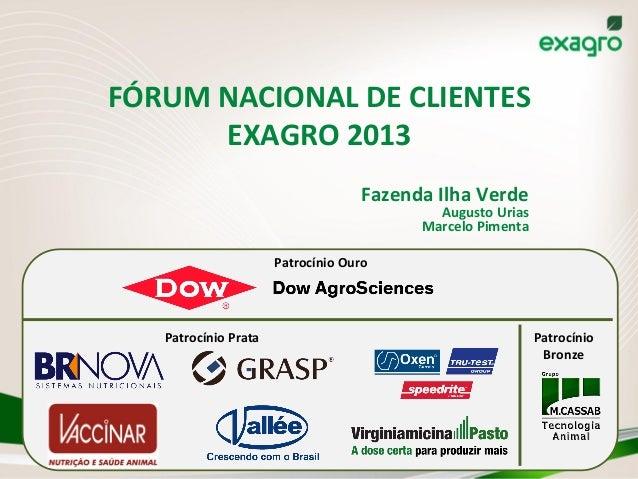 FÓRUM  NACIONAL  DE  CLIENTES   EXAGRO  2013   Fazenda  Ilha  Verde   Augusto  Urias   Marcelo  Pi...