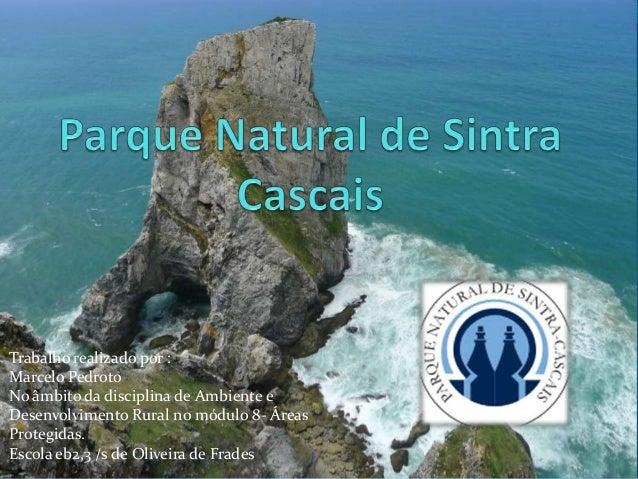 Trabalho realizado por :Marcelo PedrotoNo âmbito da disciplina de Ambiente eDesenvolvimento Rural no módulo 8- ÁreasProteg...