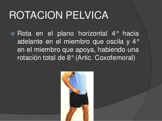 2.-BALANCEO PÉLVICO LATERAL  Se inclina hacia abajo en relación con el plano horizontal en el lado contrario al del miemb...
