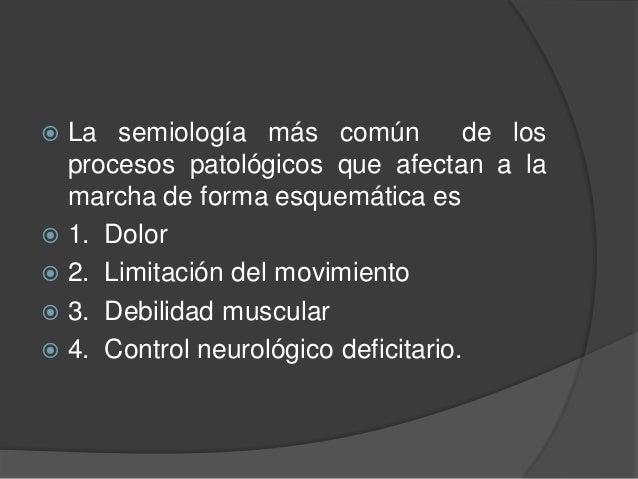 ANQUILOSIS  Pérdida de movimiento por rigidez de los tejidos de una articulación móvil  Si la anquilosis es de cadera: ...