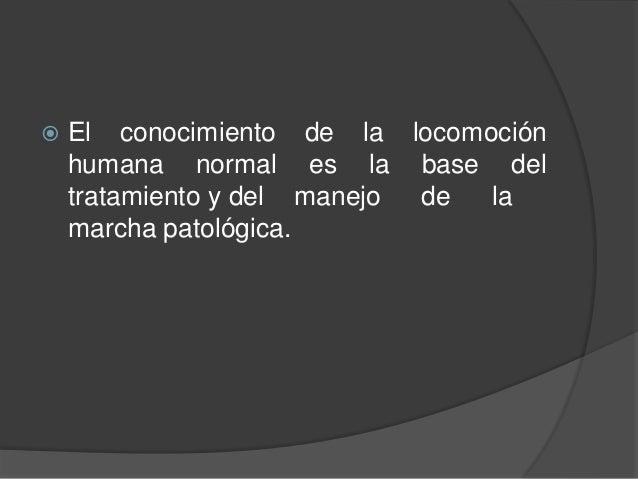  El conocimiento de la locomoción humana normal es la base del tratamiento y del manejo de la marcha patológica.
