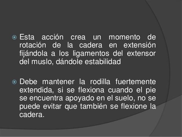 MARCHA HEMIPLEJICA  La extremidad inferior avanza con el muslo en abducción realizando un movimiento en guadaña con el pi...