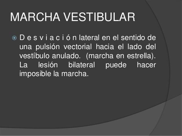 BIBLIOGRAFIA  Dr. Vera Luna, Pedro: Biomecánica de la marcha humana normal y patológica, Valencia, editorial IBV, 1999  ...