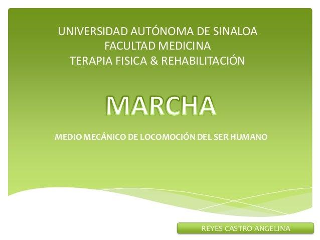 UNIVERSIDAD AUTÓNOMA DE SINALOA        FACULTAD MEDICINA  TERAPIA FISICA & REHABILITACIÓNMEDIO MECÁNICO DE LOCOMOCIÓN DEL ...