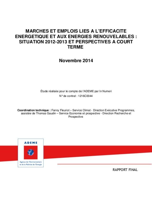 MARCHES ET EMPLOIS LIES A L'EFFICACITE ENERGETIQUE ET AUX ENERGIES RENOUVELABLES : SITUATION 2012-2013 ET PERSPECTIVES A C...