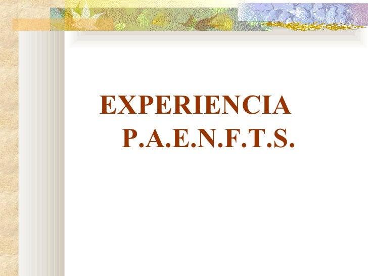 <ul><li>EXPERIENCIA  P.A.E.N.F.T.S. </li></ul>