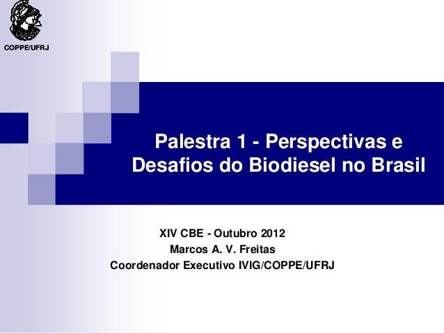 COPPE/UFRJ                  Palestra 1 - Perspectivas e                Desafios do Biodiesel no Brasil                    ...