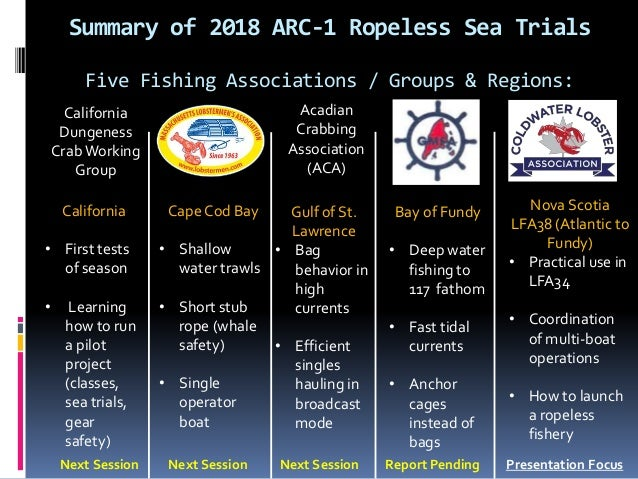 An Endless Summer of Ropeless Fishing Slide 2