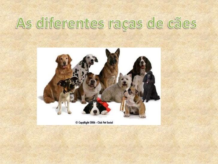 As diferentes raças de cães<br />