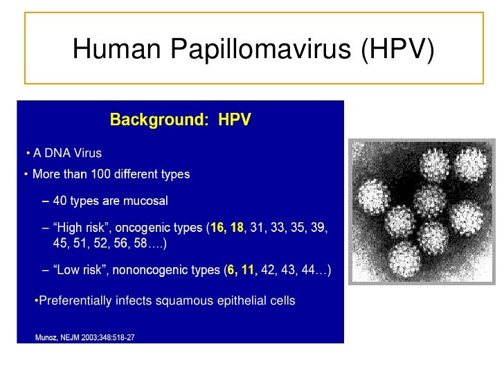 hpv epidemiology triangle Human papillomavirus (hpv)-positive oropharyngeal cancers arising from the lingual and palatine tonsils are a distinct molecular-pathologic entity that is linked to infection with hpv, especially hpv-16.