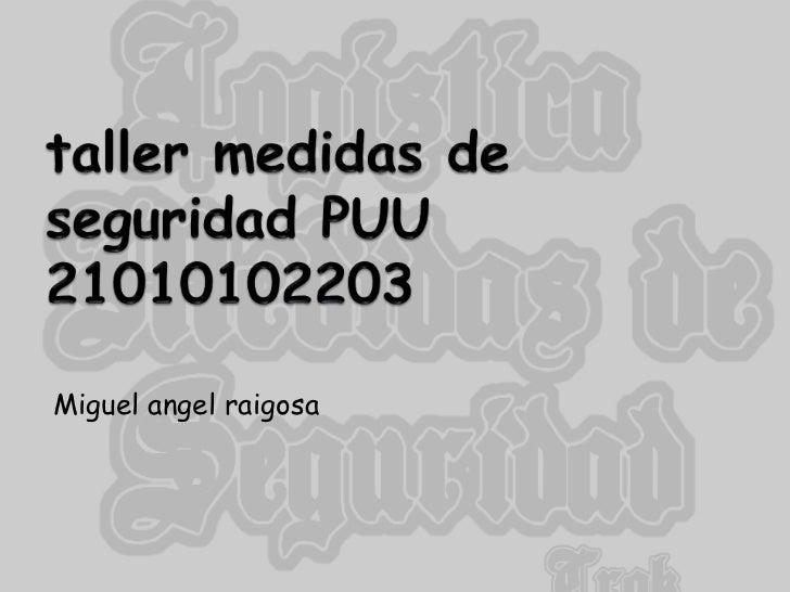 taller medidas de seguridad PUU 21010102203<br />Miguel angel raigosa<br />