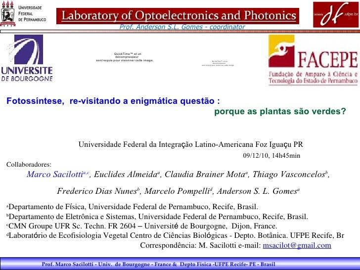 Prof. Marco Sacilotti - Univ.  de Bourgogne - France &  Depto Fisica -UFPE Recife- PE - Brasil Fotossíntese, re-visitando...