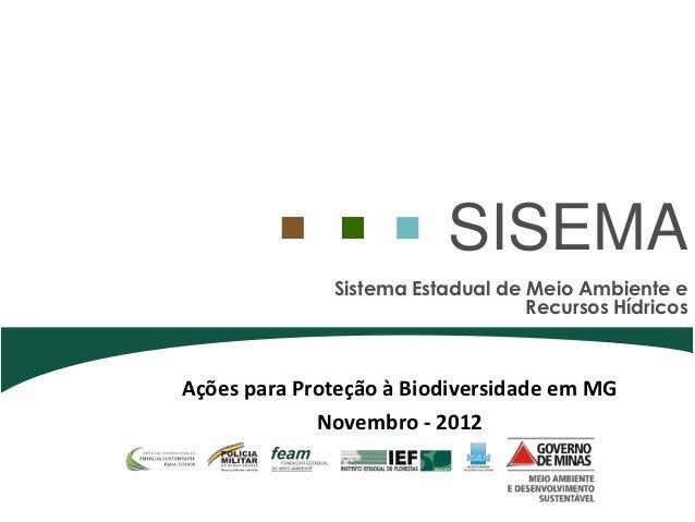 SISEMA              Sistema Estadual de Meio Ambiente e                                  Recursos HídricosAções para Prote...
