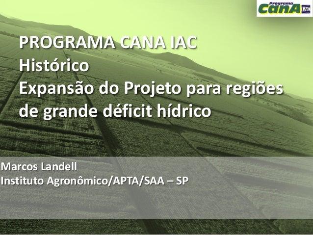 PROGRAMA CANA IAC   Histórico   Expansão do Projeto para regiões   de grande déficit hídricoMarcos LandellInstituto Agronô...