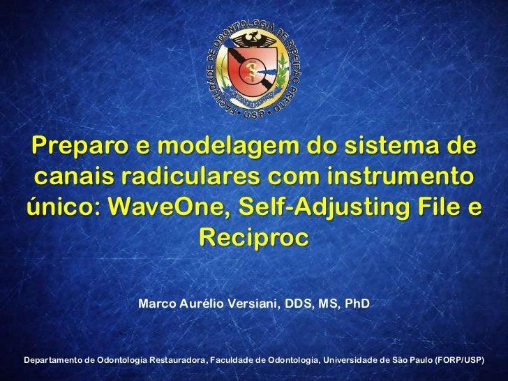 Preparo e modelagem do sistema de canais radiculares com instrumento único: WaveOne, Self-Adjusting File e Reciproc<br />M...