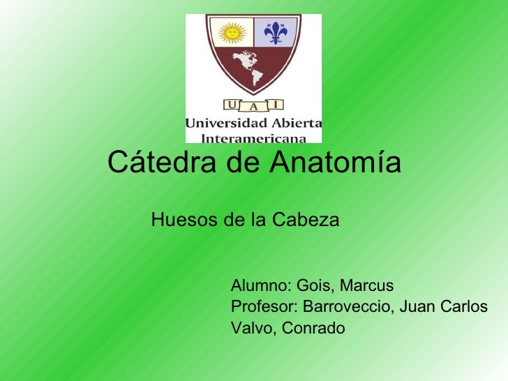 Cátedra de Anatomía <ul><li>Huesos de la Cabeza </li></ul><ul><li>Alumno: Gois, Marcus </li></ul><ul><li>Profesor: Barrove...