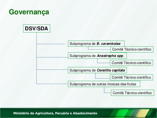 Governança DSV/SDA OEDSVs Subprograma de B. carambolae Subprograma de Anastrepha spp. Subprograma de Ceratitis capitata Su...
