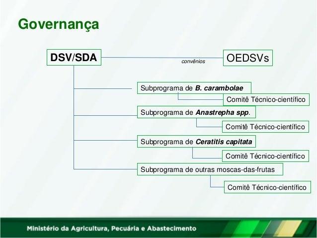Governança DSV/SDA Grupos Técnicos nos Estados Entidades federais Entidades estaduais Entidades municipais Iniciativa priv...