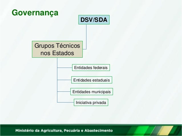 Governança DSV/SDA Fórum Nacional Grupos Técnicos nos Estados Entidades federais Entidades estaduais Entidades municipais ...