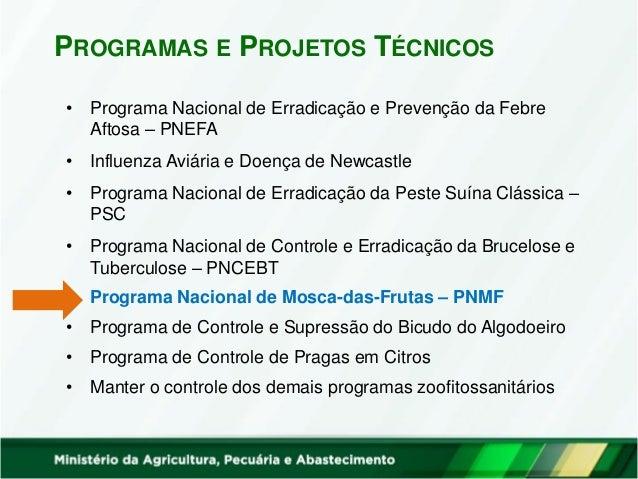 • Programa Nacional de Erradicação e Prevenção da Febre Aftosa – PNEFA • Influenza Aviária e Doença de Newcastle • Program...