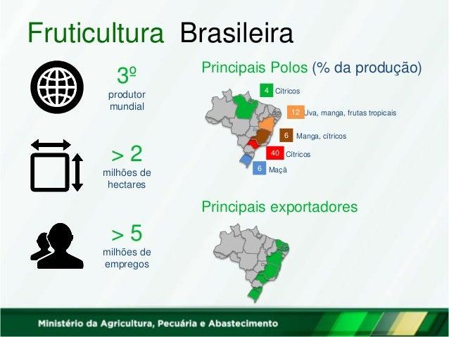 Fruticultura Brasileira 3º produtor mundial > 2 milhões de hectares > 5 milhões de empregos Principais Polos (% da produçã...