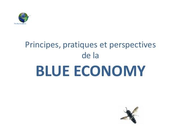 Principes, pratiques et perspectives de la BLUE ECONOMY