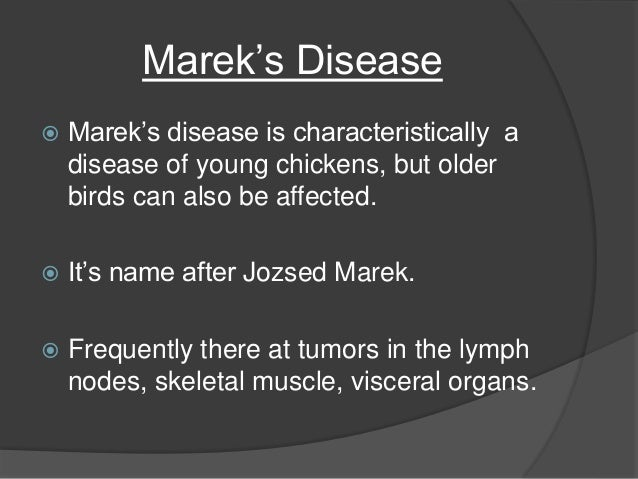 Marek S Disease In Poultry
