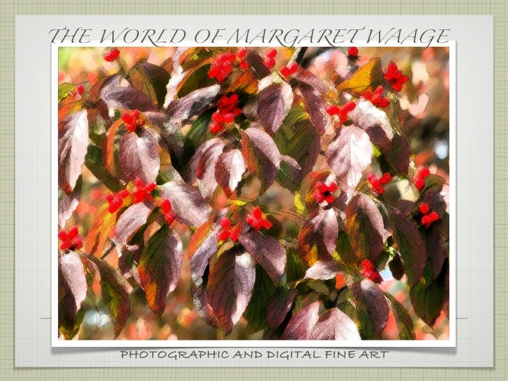 THE WORLD OF MARGARET WAAGE    PHOTOGRAPHIC AND DIGITAL FINE ART