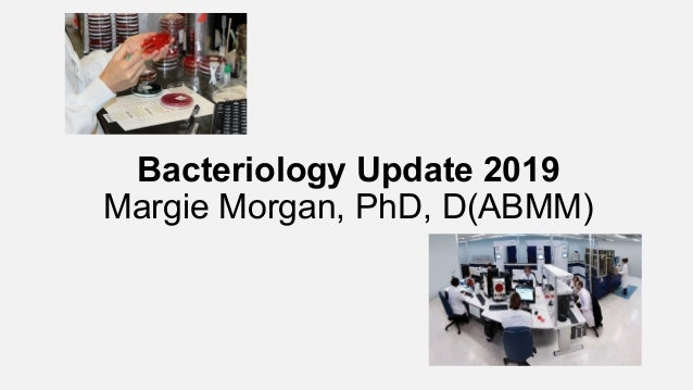 Bacteriology Update 2019 Margie Morgan, PhD, D(ABMM)