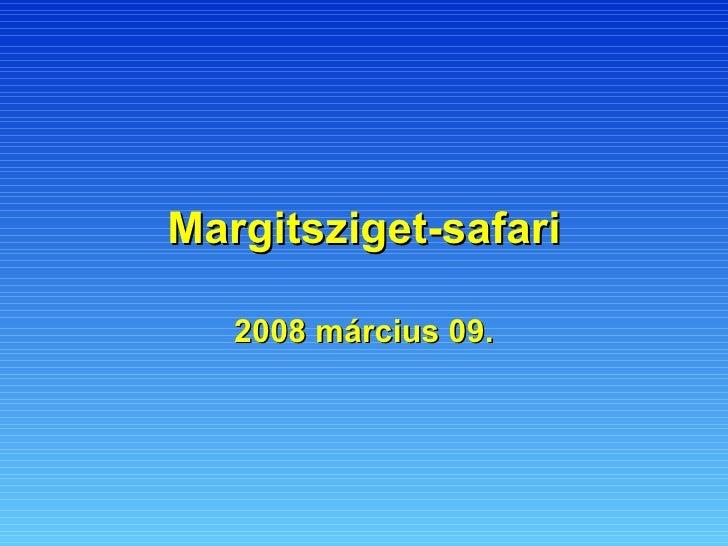 Margitsziget-safari 2008 március 09.