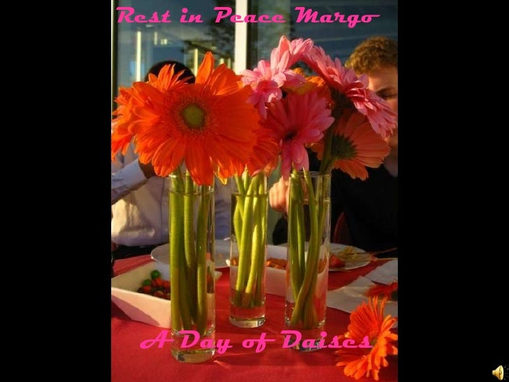 Rest in Peace Margo<br />A Day of Daises<br />