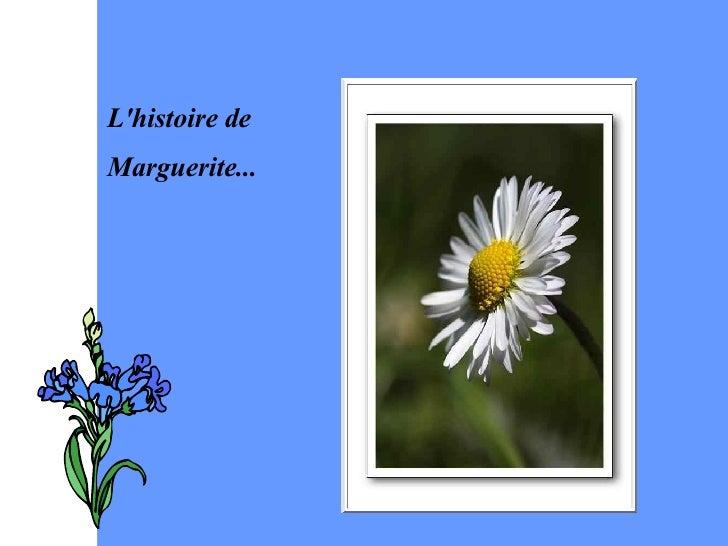 L'histoire de  Marguerite...