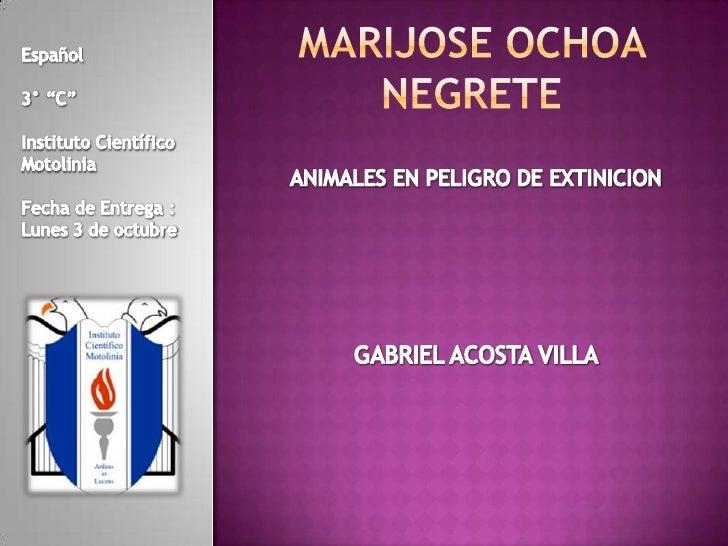 """Marijose Ochoa Negrete<br />Español<br />3° """"C""""<br />Instituto Científico Motolinia<br />Fecha de Entrega :<br />Lunes 3 d..."""