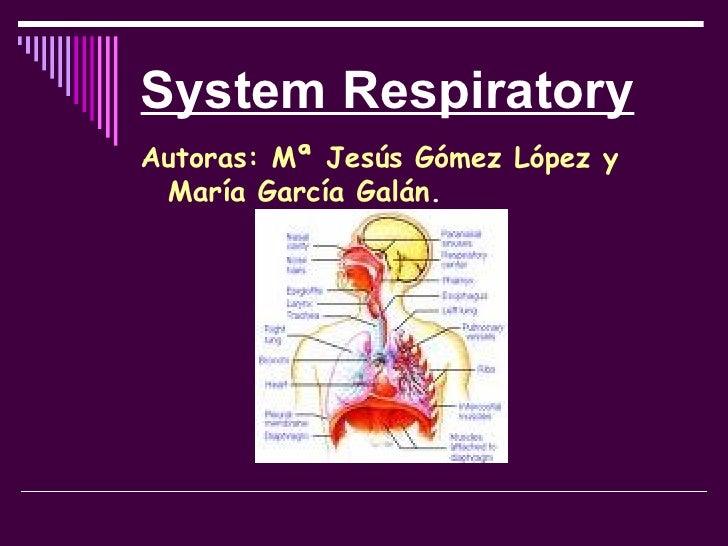 System Respiratory <ul><li>Autoras: Mª Jesús Gómez López y María García Galán . </li></ul>