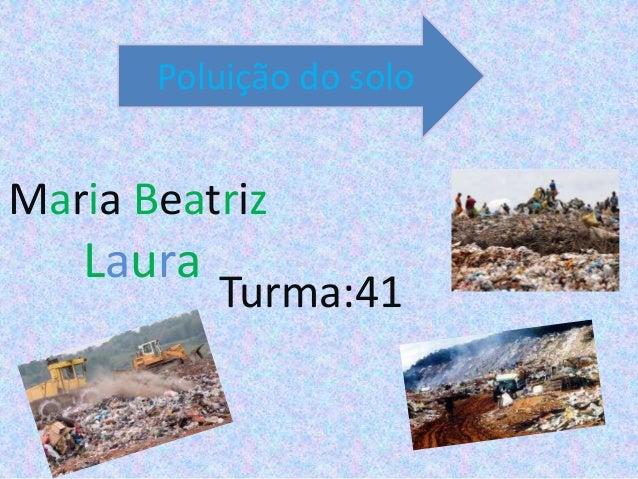 Maria BeatrizLauraTurma:41Poluição do solo