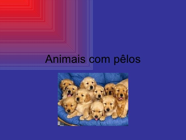 Animais com pêlos