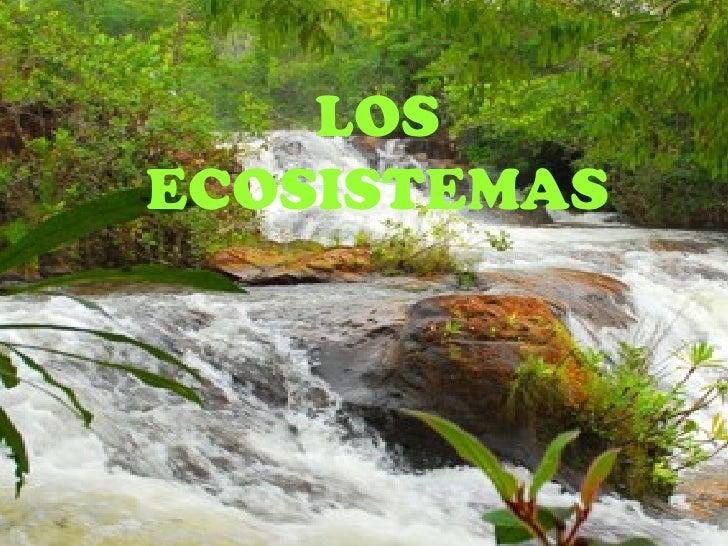 LOSECOSISTEMAS