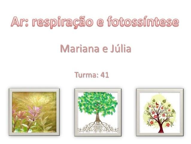 Mariana e JúliaTurma: 41
