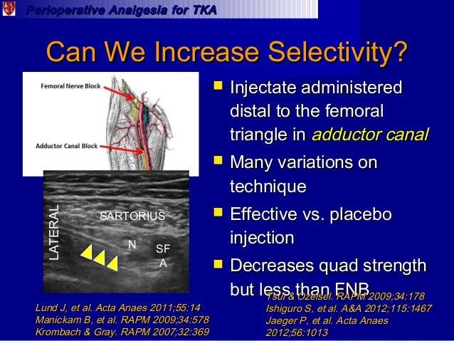 best analgesic regimen for total knee arthroplasty patients, Muscles