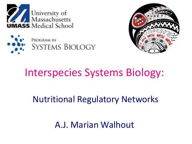 Interspecies Systems Biology: Nutritional Regulatory Networks A.J. Marian Walhout