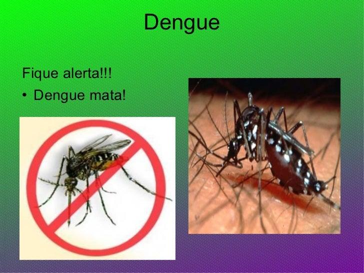 Dengue <ul><li>Fique alerta!!!  </li></ul><ul><li>Dengue mata! </li></ul>