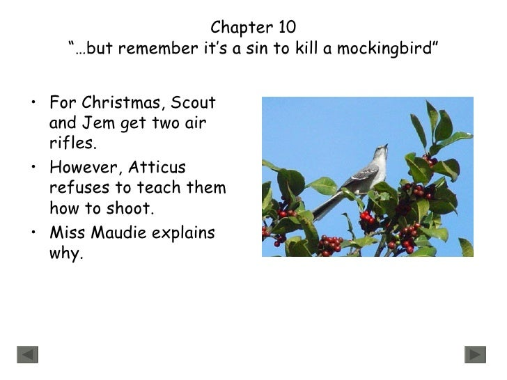 to kill a mockingbird title meaning