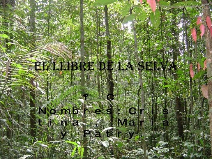 el llibre de la selva 1º C  Nombres:Cristina , Maria y Patry.