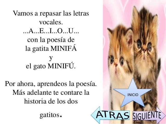 LA GATITA MINIFÁSoy la gatitaMinifáA - A - A...INICIO