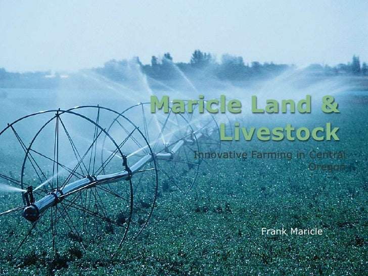 Maricle Land & Livestock<br />Innovative Farming in Central Oregon<br />Frank Maricle<br />