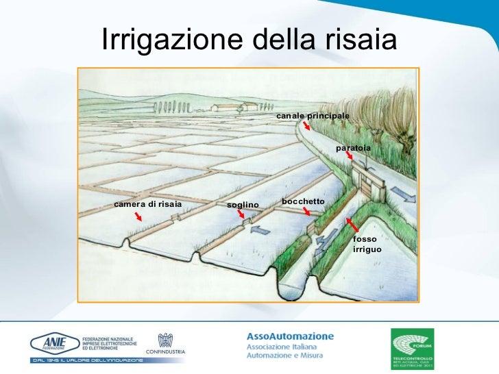 Smart water 4 novembre for Irrigazione per sommersione