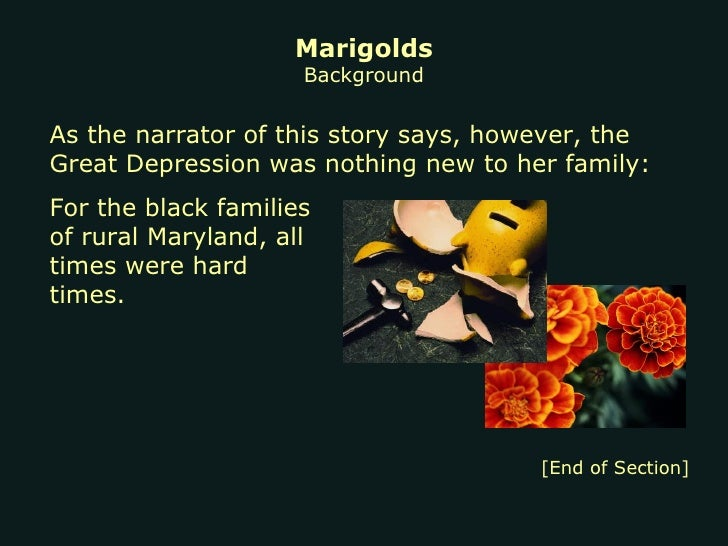 marigolds short story and main point These themes are realized through the main character,  it was at this point,  marigolds (short story) topic marigolds is a 1969 short story by eugenia collier.