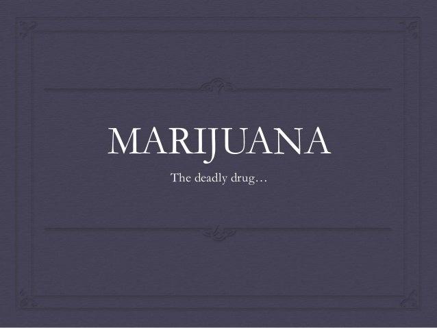 MARIJUANA The deadly drug…