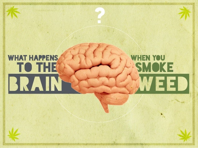 What happens to the brain when you smoke weed? what happens to the brain smoke weed when you ?